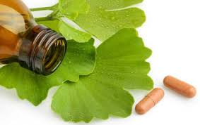 does-ginko-for-tinnitus-work-faq-info-nyc-specialist-01